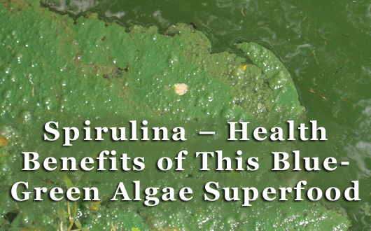 Spirulina – Health Benefits of This Blue- Green Algae Superfood